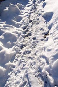 pad met sneeuw